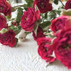 ハウスクリア岡山 ドライフラワー バラ 半生うさぎ